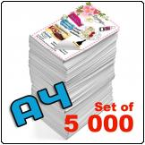 Flyers A4, 115gsm, full colour (Set of 5 000)